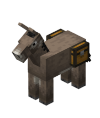 Chested Donkey.png