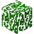 Birch Leaves BE1.png