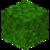 Acacia Leaves BE2.png