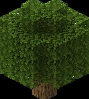 Balloon Oak Tree.png