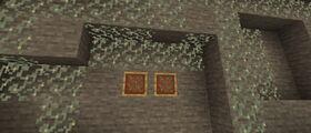 Glow Lichen 1.16.230.50.jpg