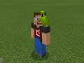 Green Parrot on Developer Steve.png