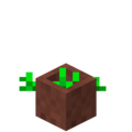 Potted Vegetables Age 1.png