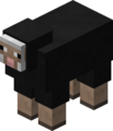 Black Sheep JE2.png