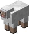 White Sheep BE4.png