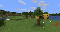 Minecraft Plus menu panorama.png