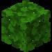 Oak Leaves JE4.png
