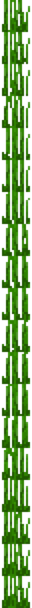 Tall Seagrass (bottom texture) JE1.png