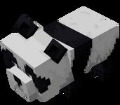 Scared Baby Panda (Dungeons).png