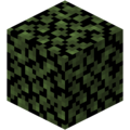 Birch Leaves (fast) JE4.png