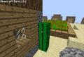 Cactus Bug.png