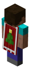 Christmas 2010 Cape.png