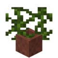 Potted Vines.png