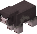 Pink Footed Pig.png