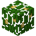Jungle Leaves LCE1.png
