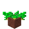 Potted Potatoes.png