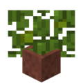 Potted Jungle Leaves.png
