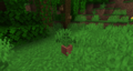Jungle Potted Fern.png