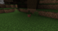 Dark Forest Potted Fern.png