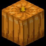 Carved Pumpkin (N) JE5.png