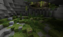 Livestream lush cave.jpg