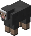 Gray Sheep JE1.png