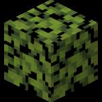 Azalea Leaves (fast) JE1.png