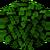 Oak Leaves (fast) JE5.png