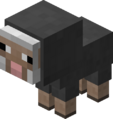 Baby Gray Sheep JE2.png