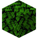 Dark Oak Leaves (fast) JE1.png