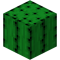 Cactus JE1.png