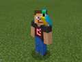 Cyan Parrot on Developer Steve.png