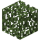 Birch Leaves BE3.png