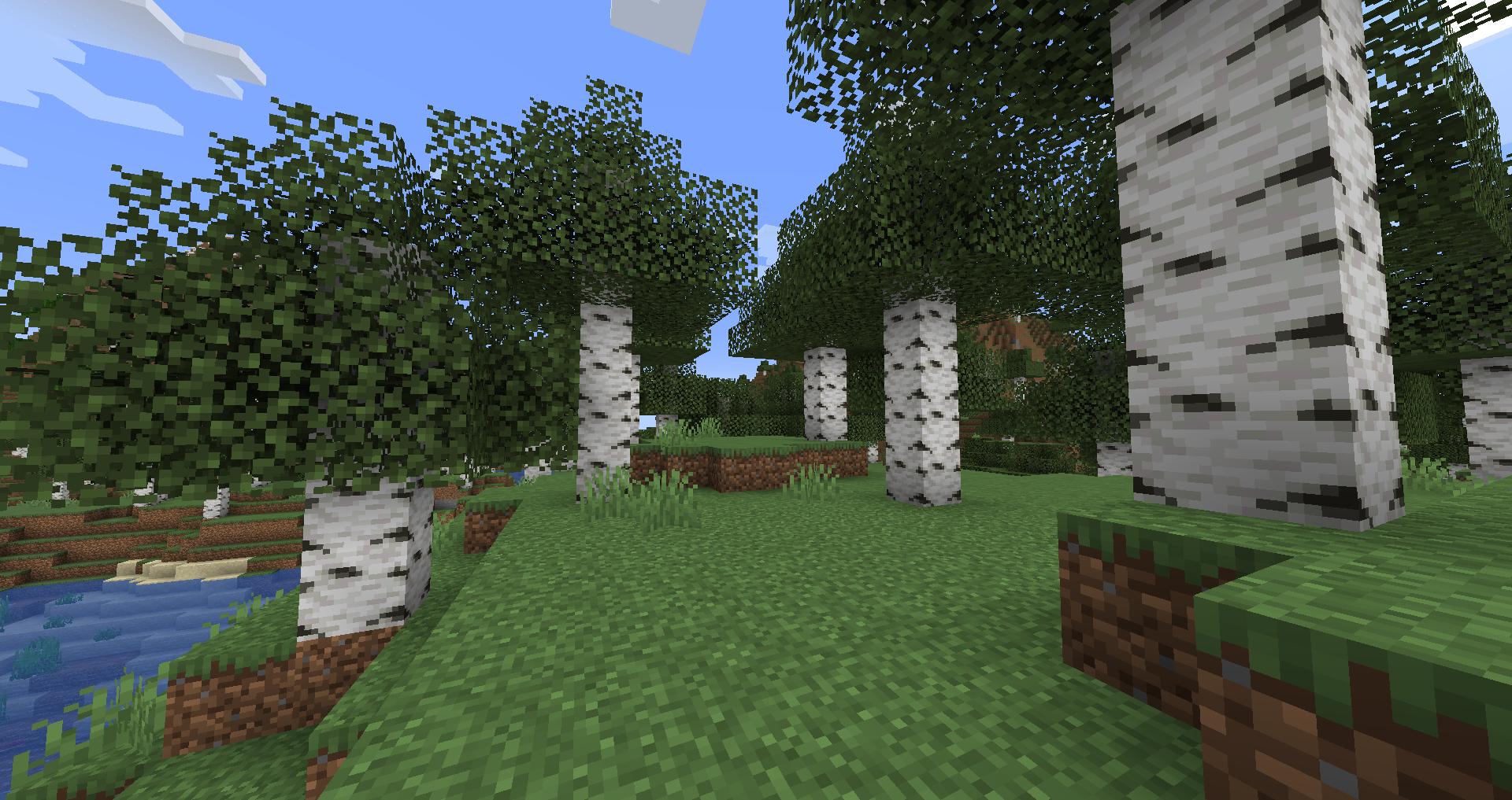 Birch Forest – Official Minecraft Wiki