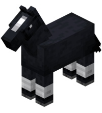 Black Horse with White Stockings.png