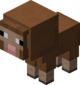 Baby Brown Sheep BE5.png