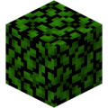Acacia Leaves (fast) JE1.png