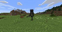 WitherSkeletonOverworld.jpg
