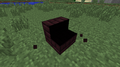 Nether Brick Stairs (W) lighting bug.png