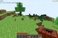 Indev 0.31 20100128 Screenshot 3.png