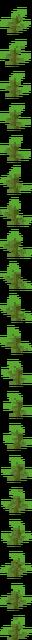 Kelp (texture) JE2.png