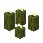 Sea Pickle Official Minecraft Wiki Let's explore how to add a sea pickle to your inventory. sea pickle official minecraft wiki