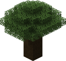 Dark Oak Tree2.png