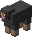 Gray Sheep BE3.png