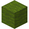 Green Wool JE3 BE3.png