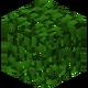 Oak Leaves BE4.png