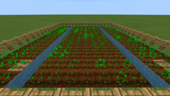 Tutorials Crop Farming Official Minecraft Wiki