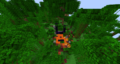 Nether Portal Ruins in the Jungle.png