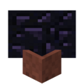 Potted Obsidian.png