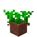 Potted Carrots.png